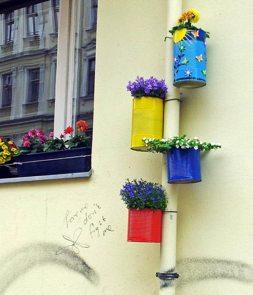 flowers in cans attached to a lamppost - to a street sign. xhiller photographs in Berlin-Kreuzberg for realeyz.tv, guerrilla gardening, urban art